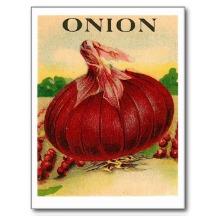 onionred