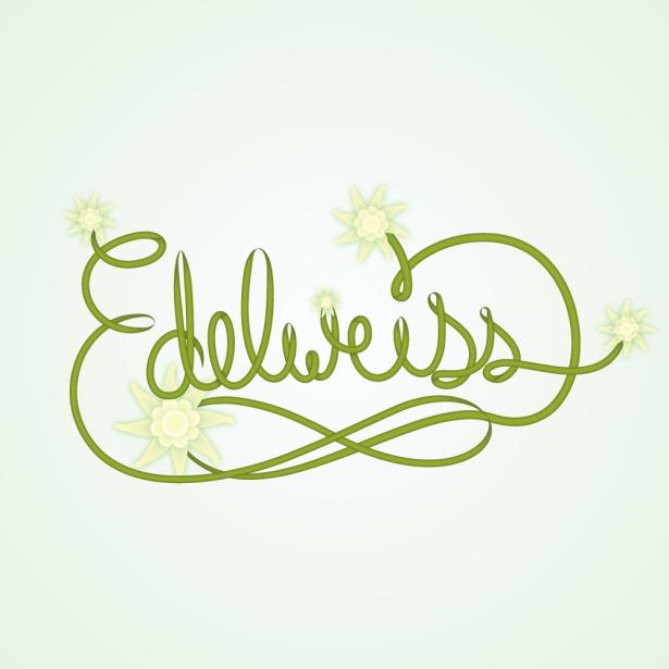 42-Edelweiss
